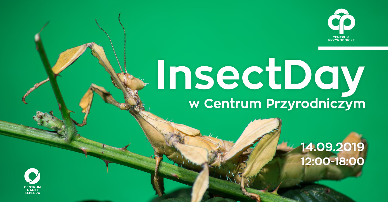 insectday