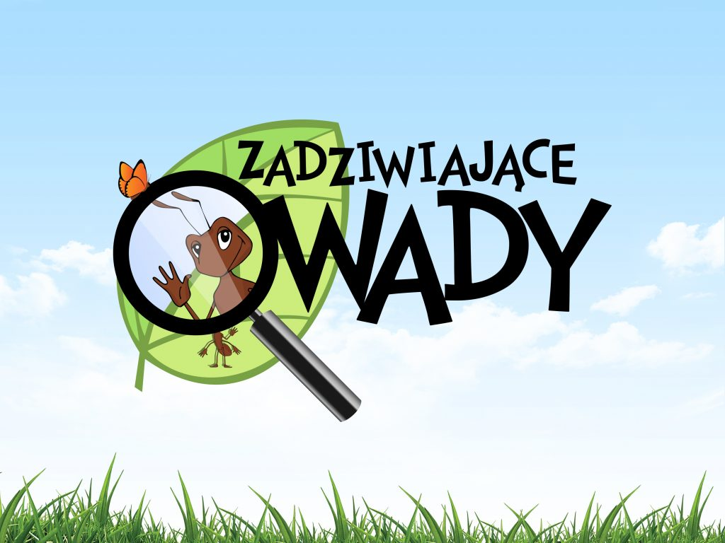 owady_template_a